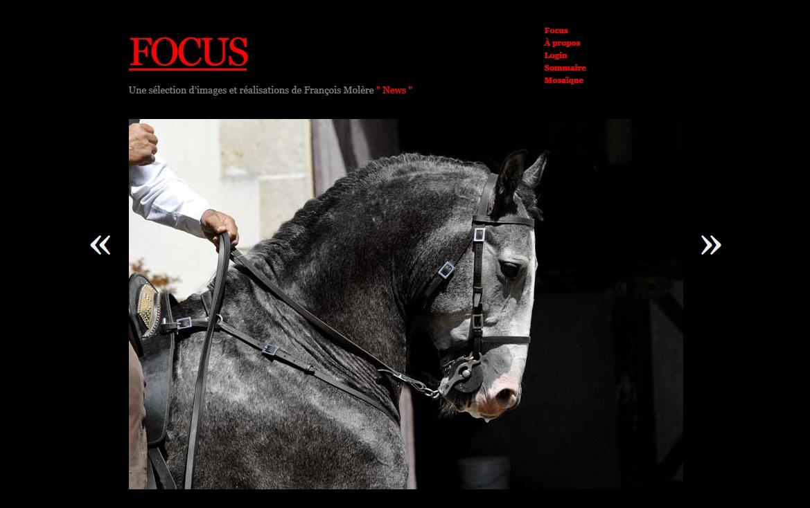 Focus_Lusitaniens
